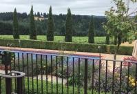 Alloro Vineyard Grounds
